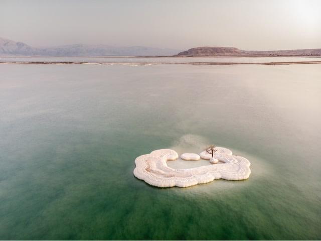 הסעות לים המלח