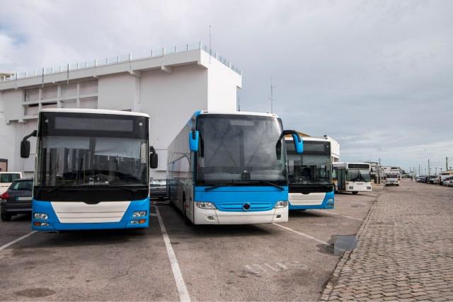 אוטובוסים לתיירים